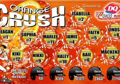 Accent Signs & Banners Orange Crush Banner